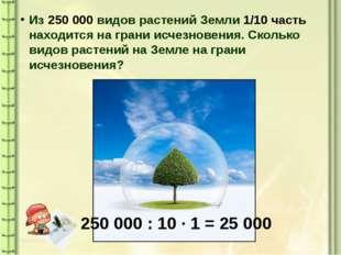 Из 250 000 видов растений Земли 1/10 часть находится на грани исчезновения. С