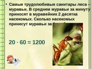 Самые трудолюбивые санитары леса – муравьи. В среднем муравьи за минуту прино