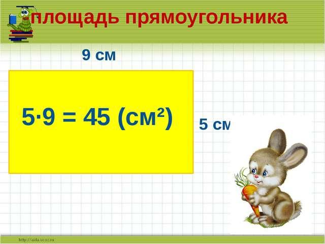 9 см 5 см 5·9 = 45 (см²) площадь прямоугольника