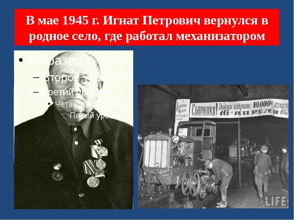 В мае 1945 г. Игнат Петрович вернулся в родное село, где работал механизатором