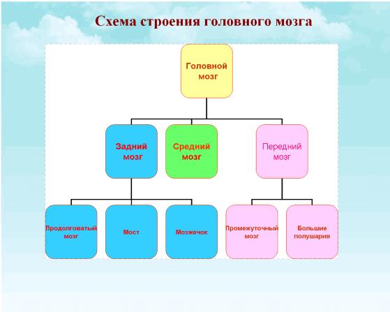 C:\Documents and Settings\test\Рабочий стол\я.bmp