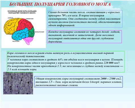 C:\Documents and Settings\test\Рабочий стол\Imageв.bmp