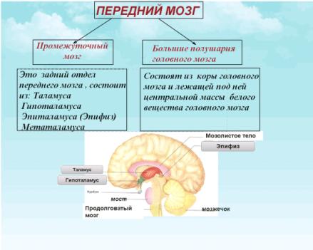 C:\Documents and Settings\test\Рабочий стол\Imageч.bmp