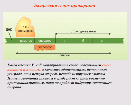 C:\Documents and Settings\test\Рабочий стол\6.bmp