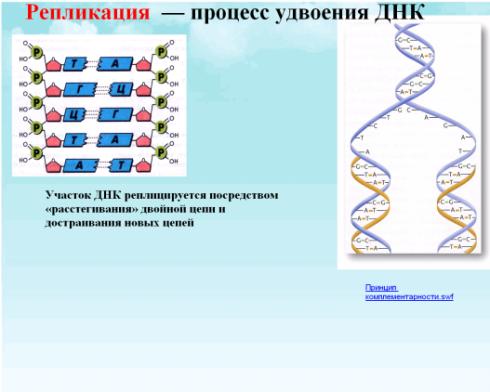 C:\Documents and Settings\test\Рабочий стол\в.bmp
