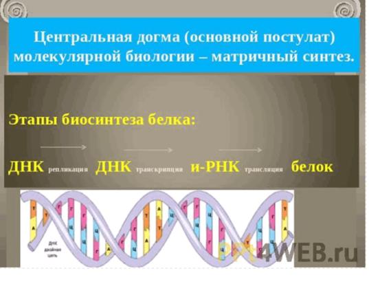 C:\Documents and Settings\test\Рабочий стол\Imageя.bmp