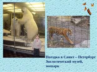 Поездка в Санкт – Петербург Зоологический музей, зоопарк