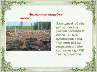Незаконная вырубка лесов Ежегодный объём рубок леса в России составляет окол