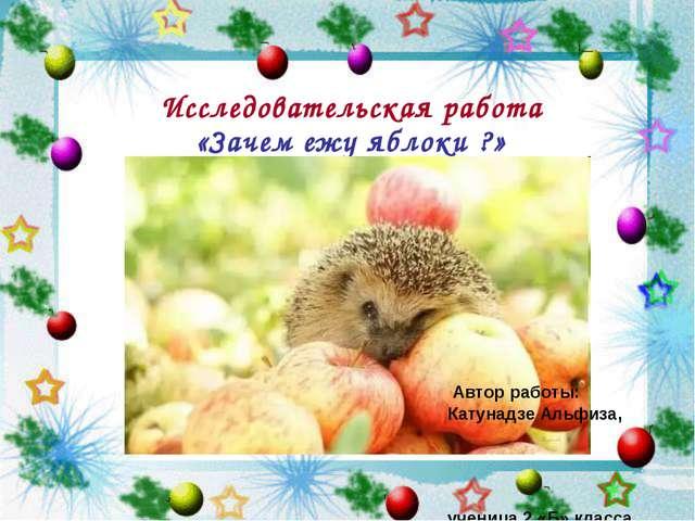 Исследовательская работа «Зачем ежу яблоки ?» Автор работы: Катунадзе Альфиза...