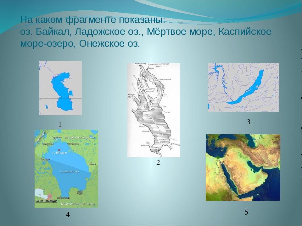 На каком фрагменте показаны: оз. Байкал, Ладожское оз., Мёртвое море, Каспийс...