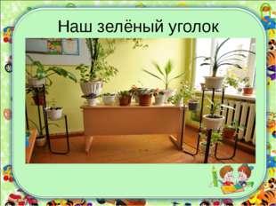 Наш зелёный уголок