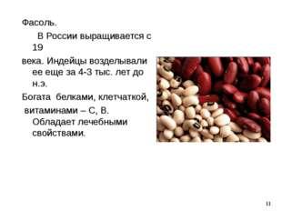 Фасоль. В России выращивается с 19 века. Индейцы возделывали ее еще за 4-3 ты