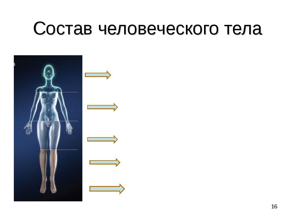 Состав человеческого тела Белки 15-20% Жиры 19% Углеводы 0.6% Минеральные сол...