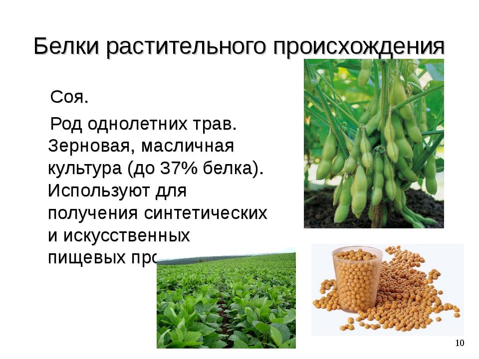 Белки растительного происхождения Соя. Род однолетних трав. Зерновая, масличн...