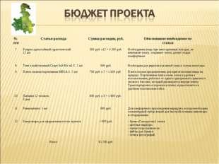 № п/пСтатья расходаСумма расходов, руб.Обоснование необходимости статьи 7