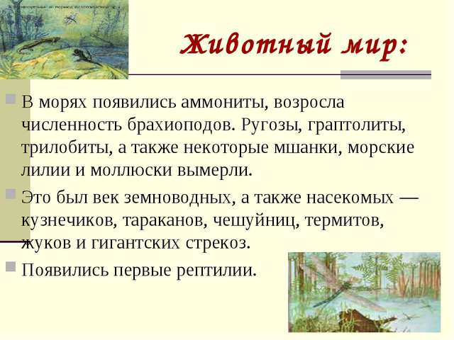Животный мир: В морях появились аммониты, возросла численность брахиоподов. Р...
