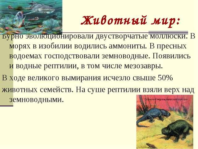 Животный мир: Бурно эволюционировали двустворчатые моллюски. В морях в изобил...