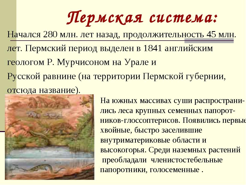 Пермская система: Начался 280 млн. лет назад, продолжительность 45 млн. лет....