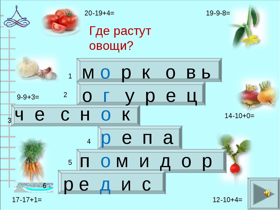 Где растут овощи? м о р к о в ь о г у р е ц ч е с н о к р е п а п о м и д о р...