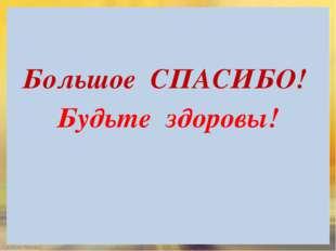Большое СПАСИБО! Будьте здоровы! FokinaLida.75@mail.ru