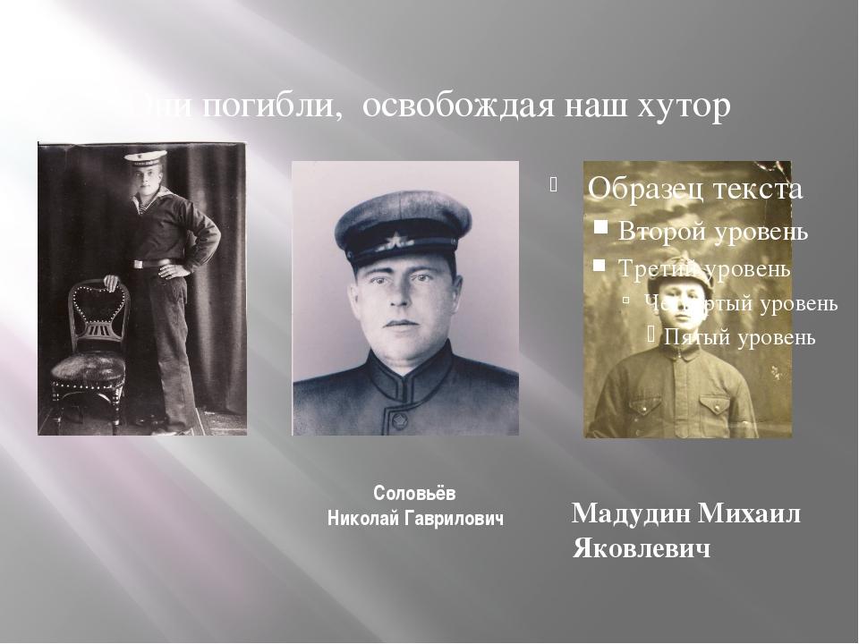 Соловьёв Николай Гаврилович Мадудин Михаил Яковлевич Они погибли, освобождая...