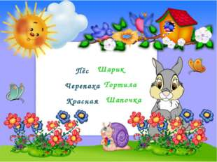 Пёс Черепаха Красная Шарик Тортила Шапочка