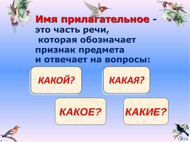 КАКОЕ? КАКИЕ? Valya Valya