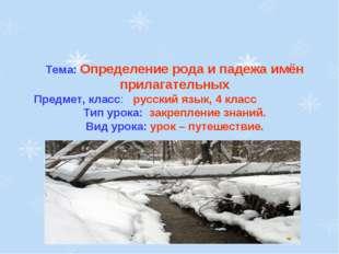 Тема: Определение рода и падежа имён прилагательных Предмет, класс: русский