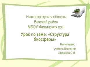 Нижегородская область Вачский район МБОУ Филинская сош Урок по теме: «Структу