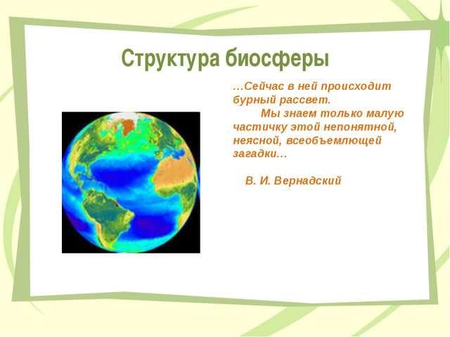 Структура биосферы …Сейчас в ней происходит бурный рассвет. Мы знаем только м...
