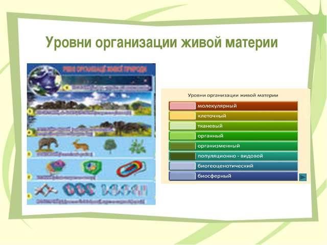 Уровни организации живой материи Передельская Т.В.
