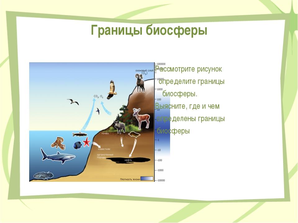 Границы биосферы Рассмотрите рисунок определите границы биосферы. Выясните, г...
