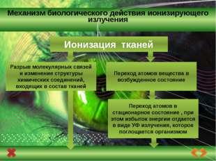 биохимическая реакция, приводящая к разрушению молекул нуклеиновых кислот и