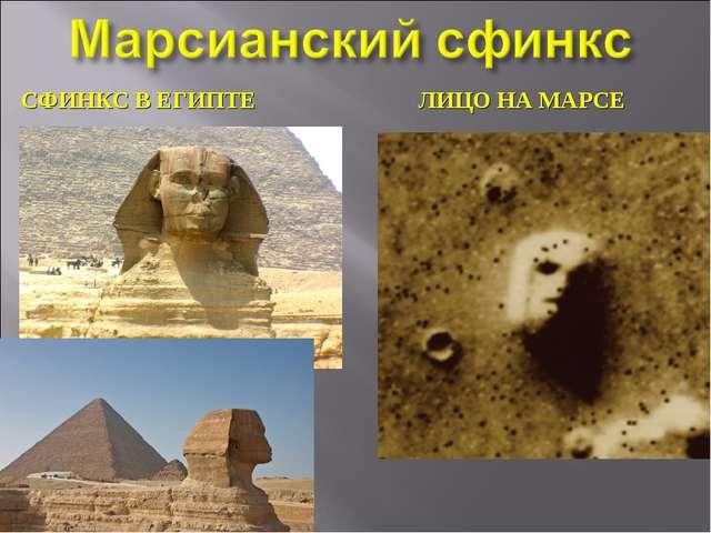 СФИНКС В ЕГИПТЕ ЛИЦО НА МАРСЕ