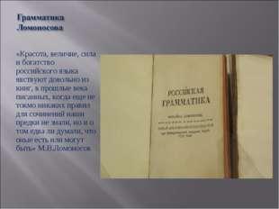 «Красота, величие, сила и богатство российского языка явствуют довольно из кн
