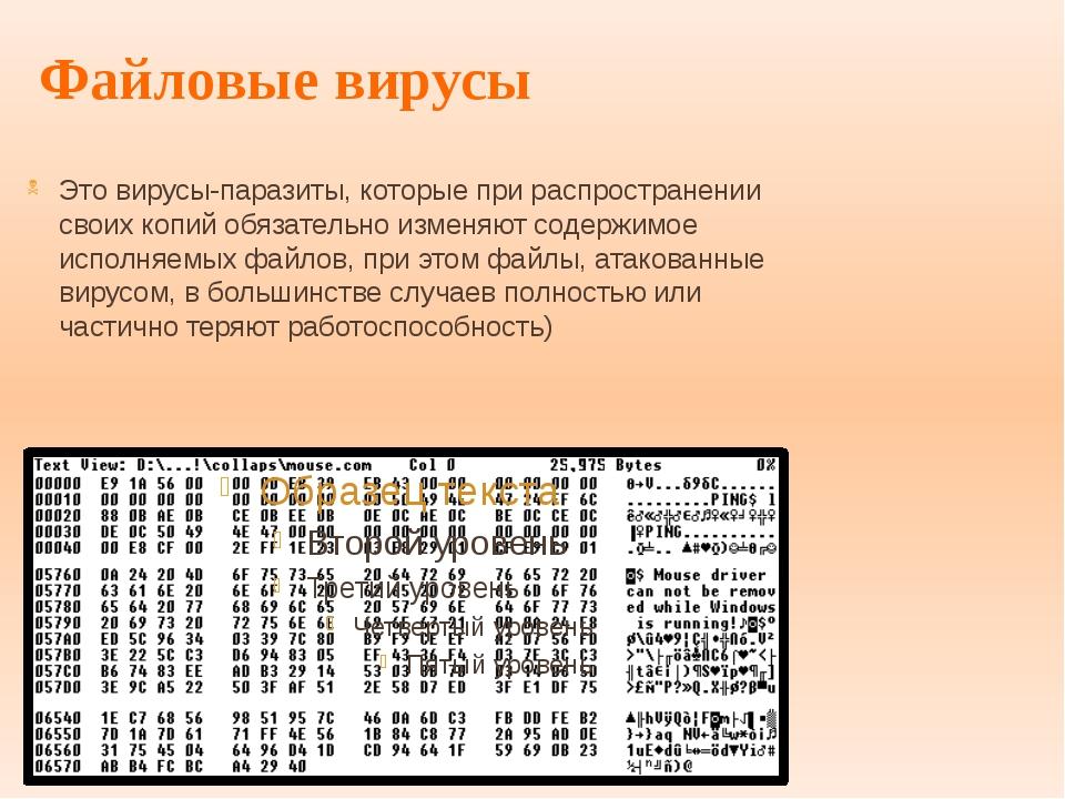 Файловые вирусы Это вирусы-паразиты, которые при распространении своих копий...