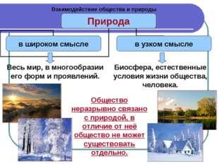 Взаимодействие общества и природы Весь мир, в многообразии его форм и проявле