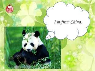 I'm from China.