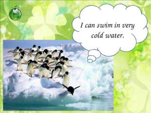 I can swim in very cold water.