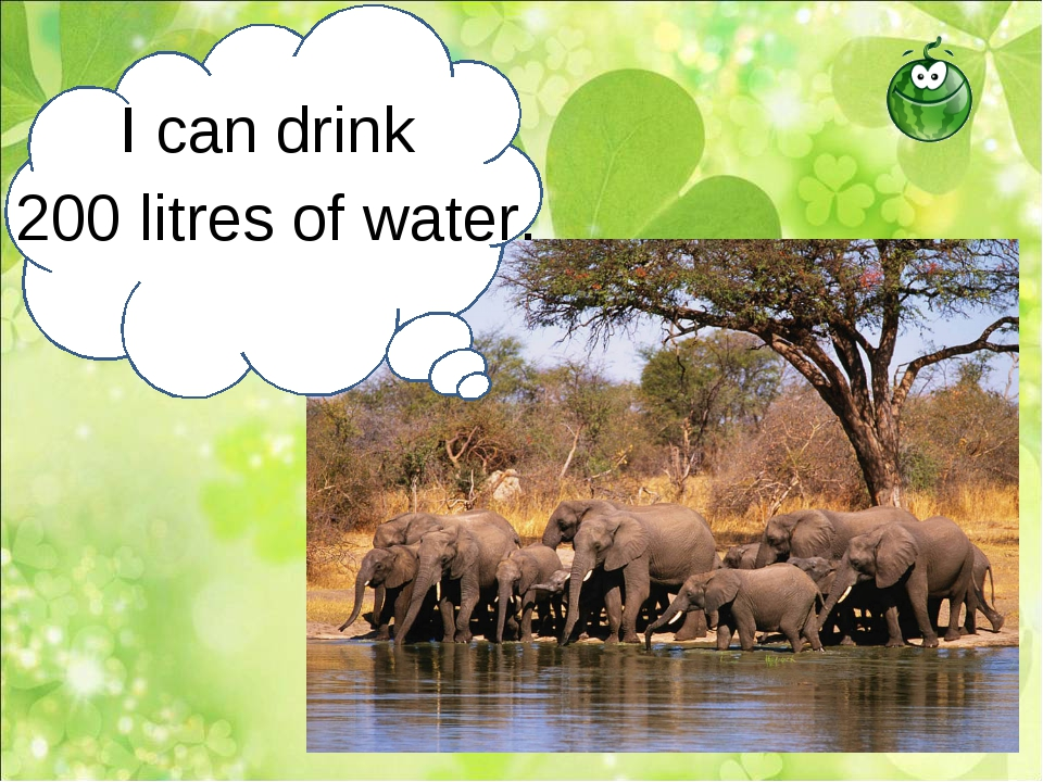 I can drink 200 litres of water.