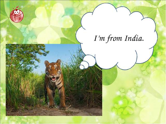 I'm from India.