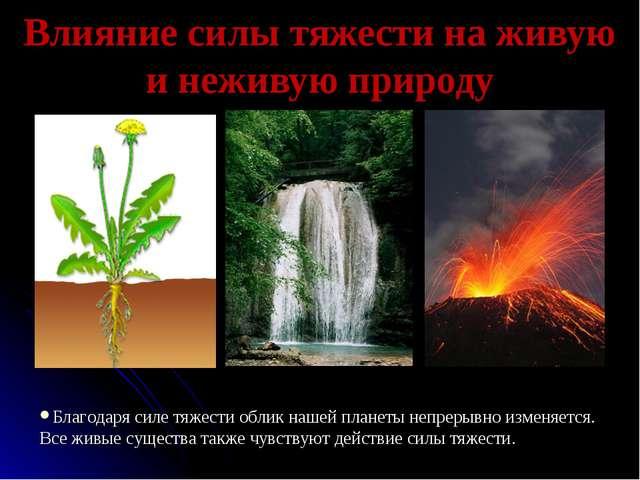 Влияние силы тяжести на живую и неживую природу Благодаря силе тяжести облик...