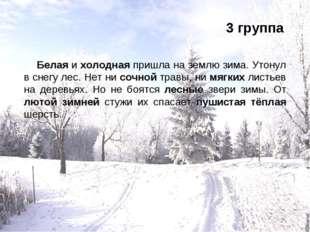 3 группа Белая и холодная пришла на землю зима. Утонул в снегу лес. Нет ни со