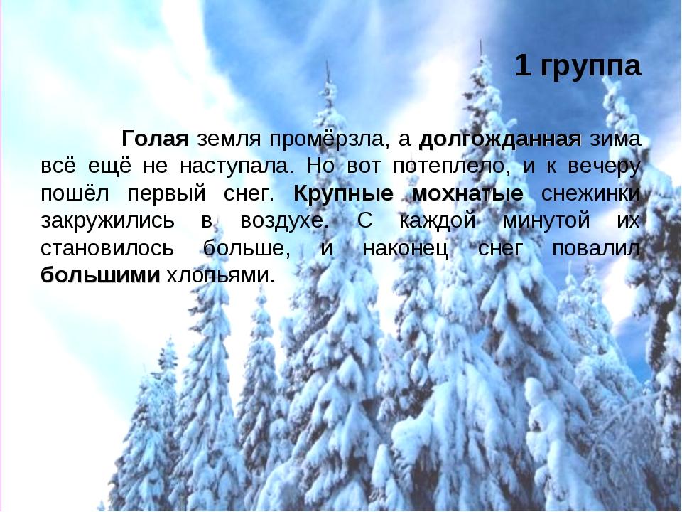 golaya-zemlya-promerzla-poshel-sneg