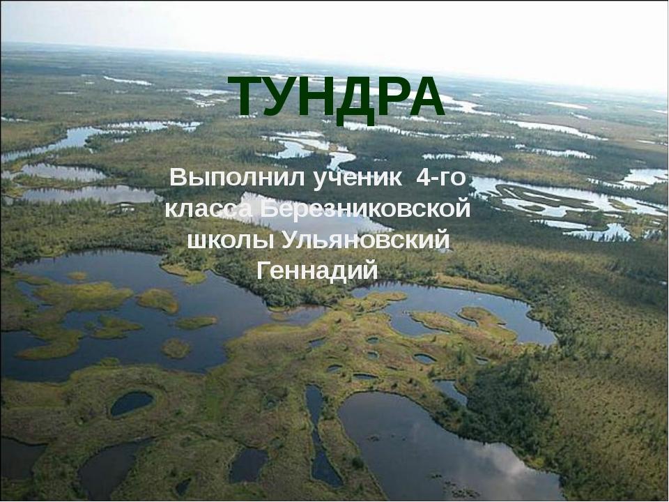 ТУНДРА Выполнил ученик 4-го класса Березниковской школы Ульяновский Геннадий