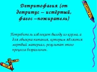 Детритофагия (от детритус – истёртый, фагос –пожиратель) Потребитель извлекае