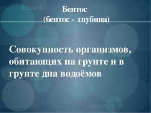 Бентос (бентос - глубина) Совокупность организмов, обитающих на грунте и в гр