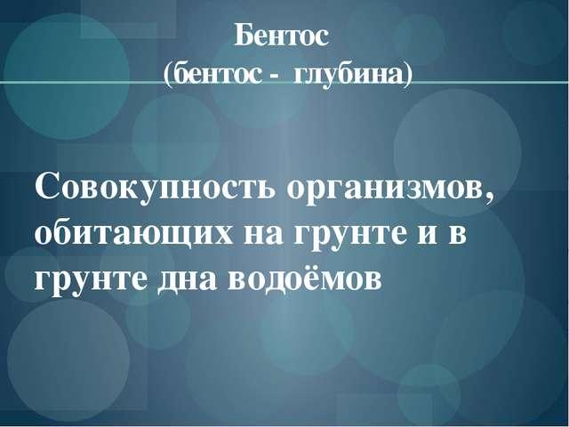 Бентос (бентос - глубина) Совокупность организмов, обитающих на грунте и в гр...