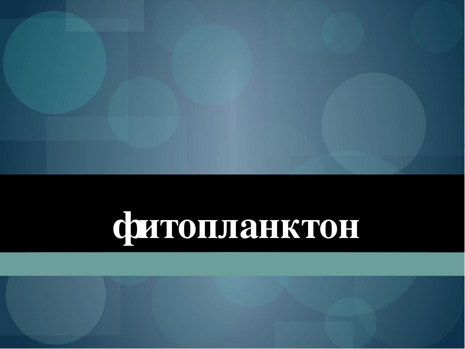 фитопланктон