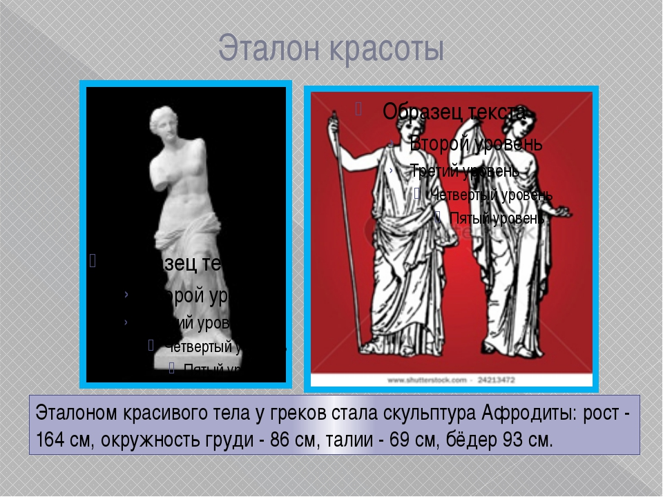 Эталон красоты Эталоном красивого тела у греков стала скульптура Афродиты: ро...